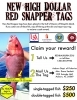 High Dollar Red Snapper Tagging Program announced