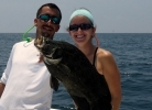 GET INVOLVED WITH DISL'S NEW TRIPLETAIL TAGGING MOVEMENT