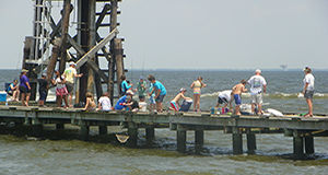 Day Camps | Dauphin Island Sea Lab